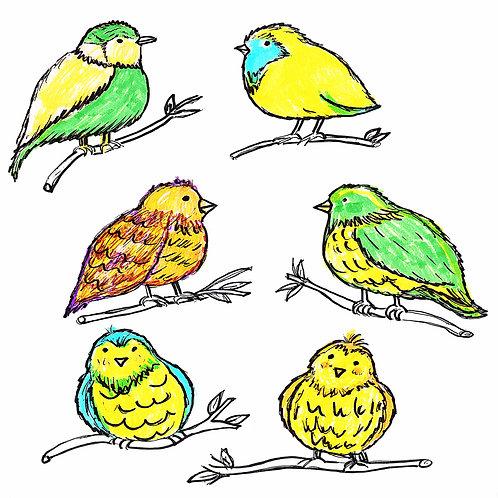 Illustration of Birds , Digital Download,Hand Drawn Art
