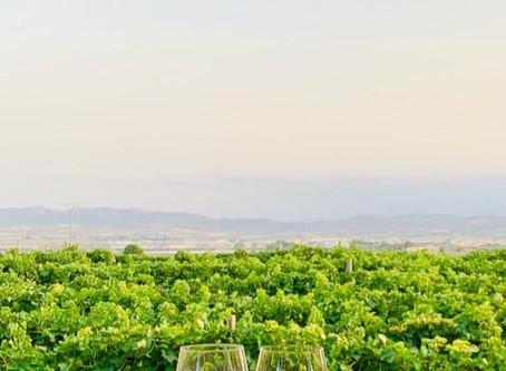 Bodas Toscana, volviendo a los inicios de los banquetes..