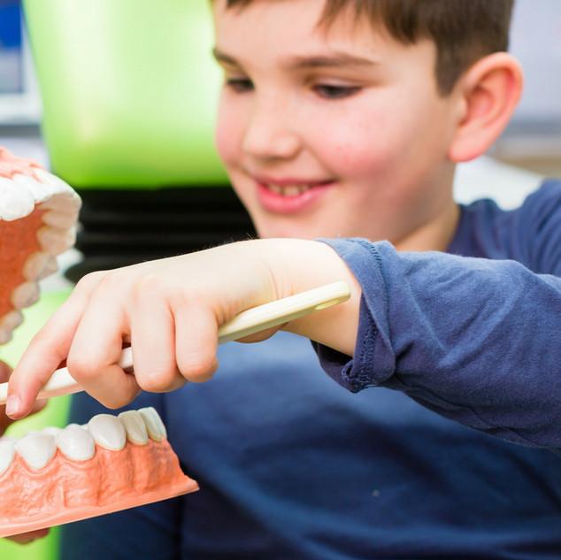 educacion con dentistas en concepcion