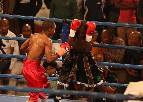 boxing (14).jpg