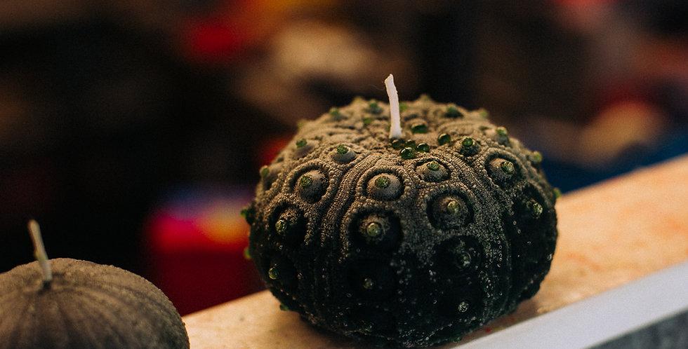 Large Pencil Sea Urchin Candle