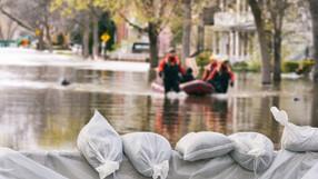 Простичка рецепта за ефективна борба с бедствията