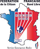 logo-FFCBLSER - France Stickers.jpg