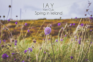 IAY Yarn Club - Spring in Ireland.jpg