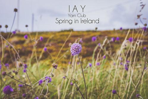 Spring in Ireland - Quarterly Yarn Club