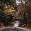 Thumbnail: Autumn in Ireland - Quarterly Yarn Club