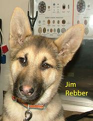 Jim Rebber.jpg