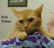 Bub Fisher.jpg