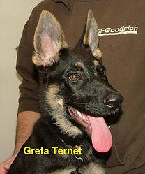 Greta Ternet.jpg