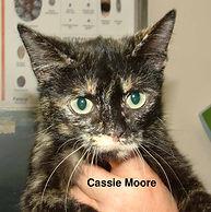 Cassie Moore.jpg