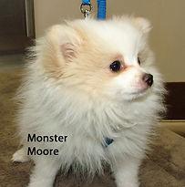 Monster Moore.jpg