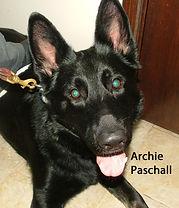 ARchie Paschall.jpg
