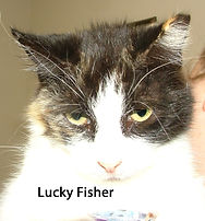 Lucky Fisher.jpg