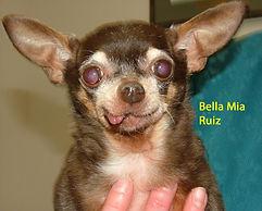 Bella Mia Ruiz.jpg