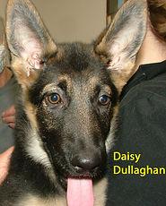 Daisy Dullaghan.jpg