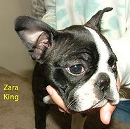 Zara King.jpg