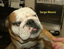 Sarge Moore.jpg