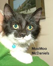 MooMoo McDaniels.jpg
