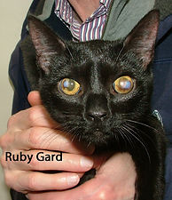 Ruby Gard.jpg