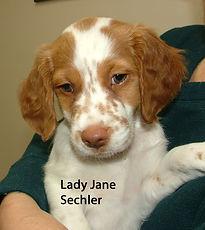 Lady Jane Sechler.jpg