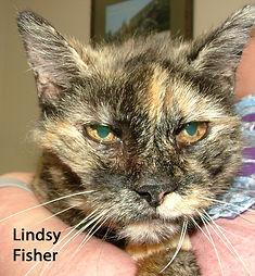 Lindsy Fisher.jpg