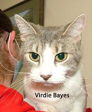 Virdie Bayes.jpg