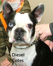 Diesel Cotes.jpg