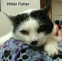 Hitler Fisher.jpg