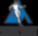 Logo SAS.png