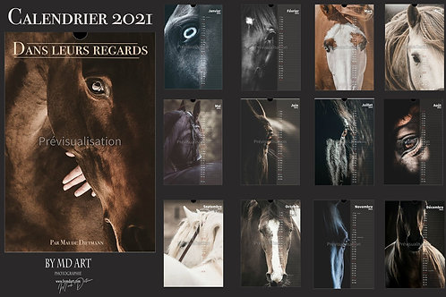 """Calendrier 2021 """"Dans leurs regards"""""""