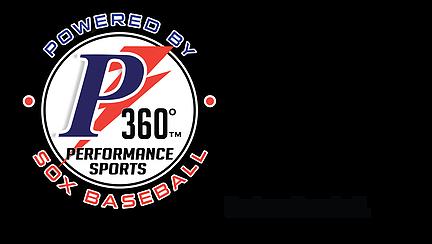 P360 Logo.png