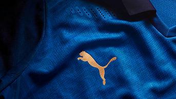 Texture Puma.jpg
