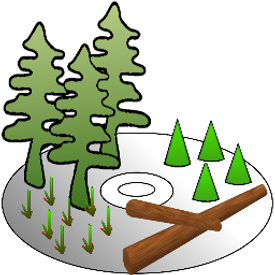 Assisi Forestry Software