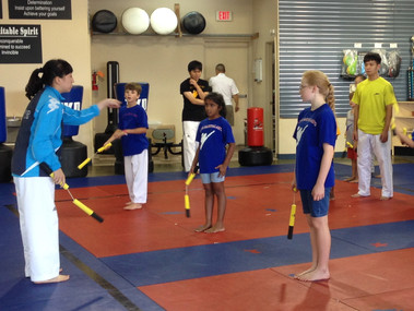 Why do the same old thing this summer? Try Summer Camp at Elite Karate!