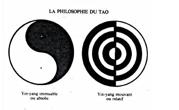 le principe yin yang.JPG