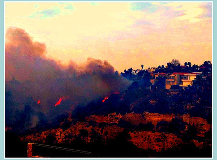 שריפה, אחים, שריפה