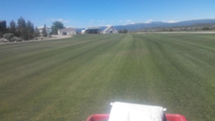 Lupine Organic Fertilizer Durango, CO.