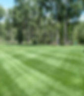 Lawn maintenance programs from Lupine Lawn Care. Durango, CO.