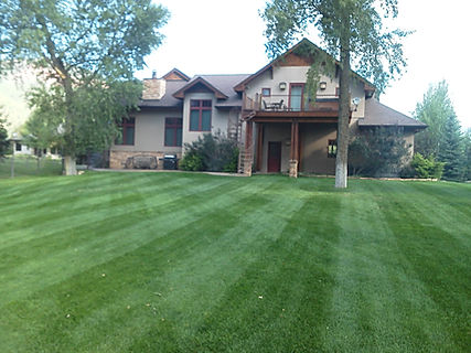 Durango lawn maintenance programs to fit your needs.