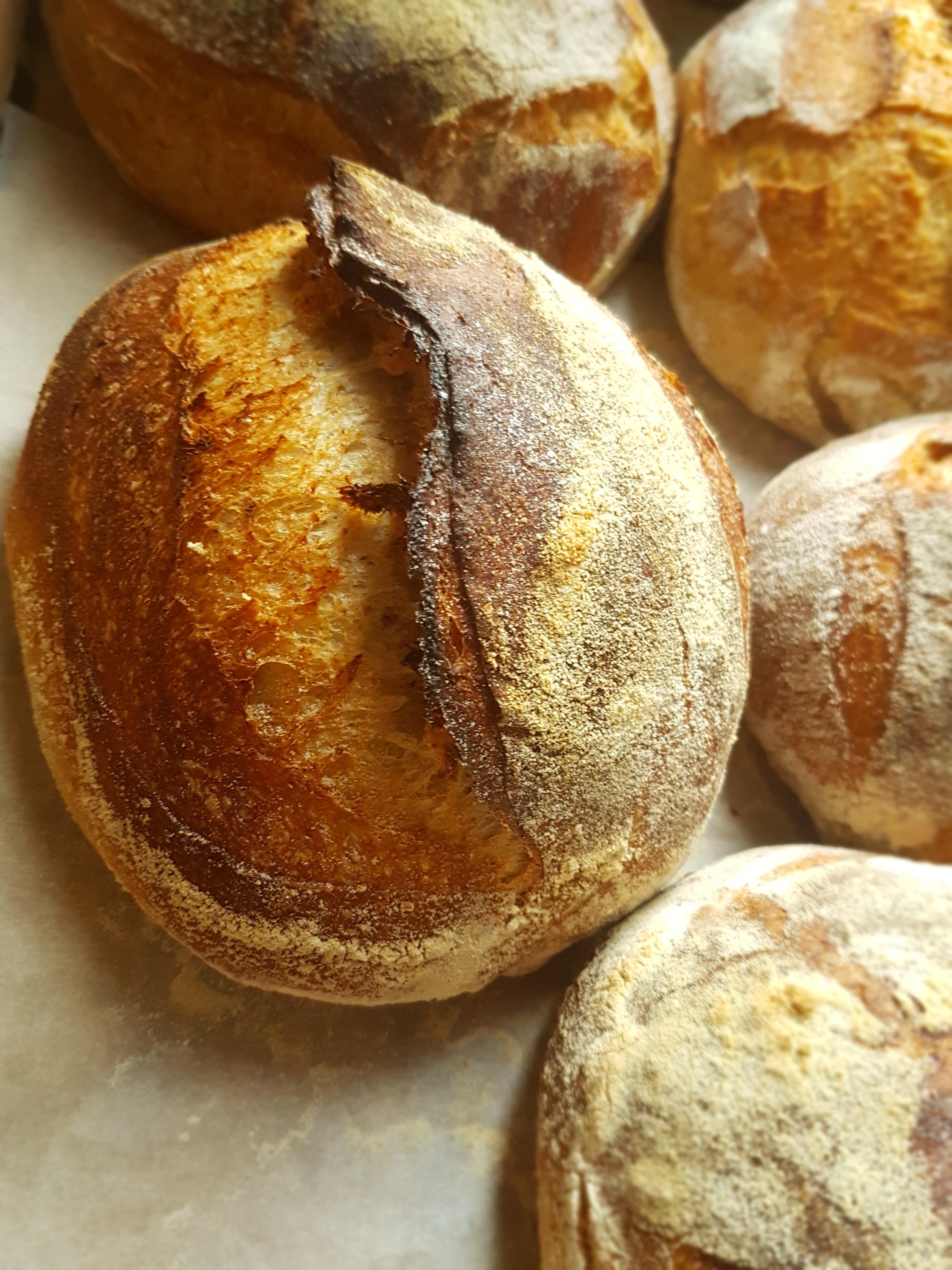 Sourdough Baking Class - 6 hours