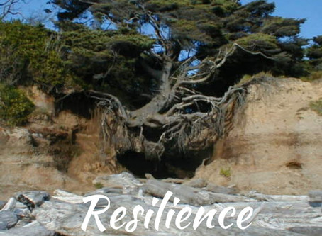 Regain Resilience In Leadership and Life...Even In The Midst of Uncertainty