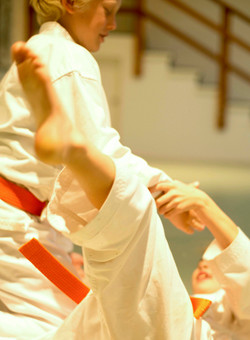 Aikido martial arts for kids