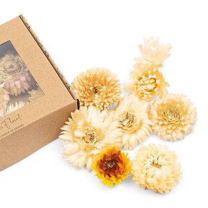 Fleur déco jaune box
