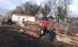 Pilage - Banque des bois