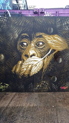 monkey brink.jpg