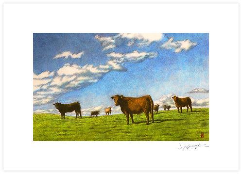Pasture, Blue Sky print image