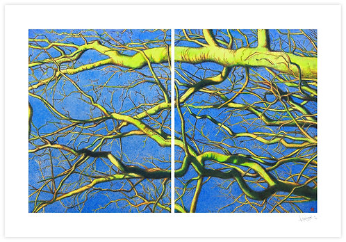Sky above Is Blue (Diptych)