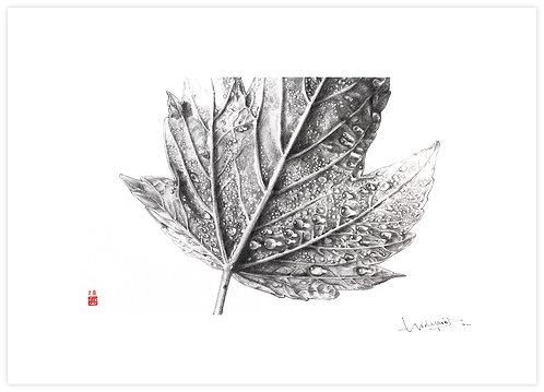 Autumn Rain print image