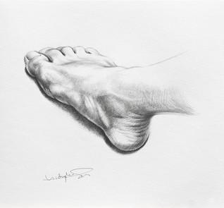 Artist's Foot