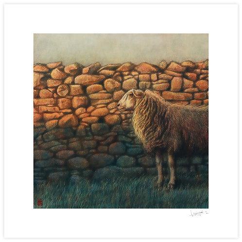 Evening, Stone Wall